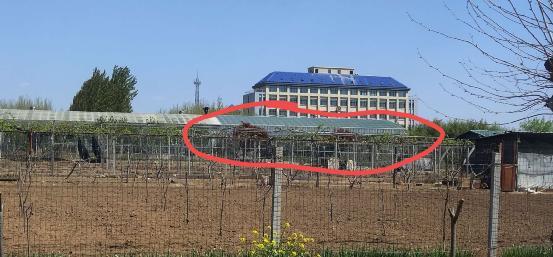 青岛市:村民举报行政处罚书形同空文 违建